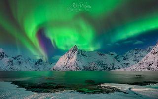Арктический Световорот